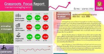 ภาวะเศรษฐกิจฐานราก เดือนมีนาคม - เมษายน 2562