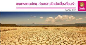 เกษตรกรรมไทย ปี 2563